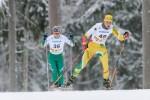 Medaliai Lietuvos slidinėjimo čempionate